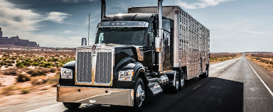 Kenworth W990 Long-Hood Conventional Heavy Duty Truck