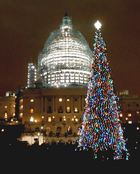 Capitol Christmas Tree Lighting Ceremony 2015 - New Kenworth W990 Features Special Design For Capitol Christmas Tree