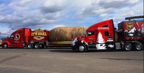 kenworth-big-idaho-potato-and-christmas-tree-1lr